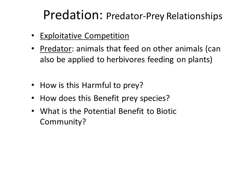 Predation: Predator-Prey Relationships Exploitative Competition Predator: animals that feed on other animals (can also be applied to herbivores feeding on plants) How is this Harmful to prey.