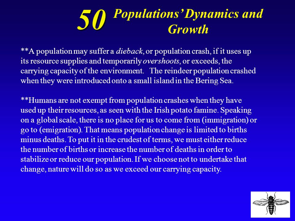 50 Define and give an example of a population crash.