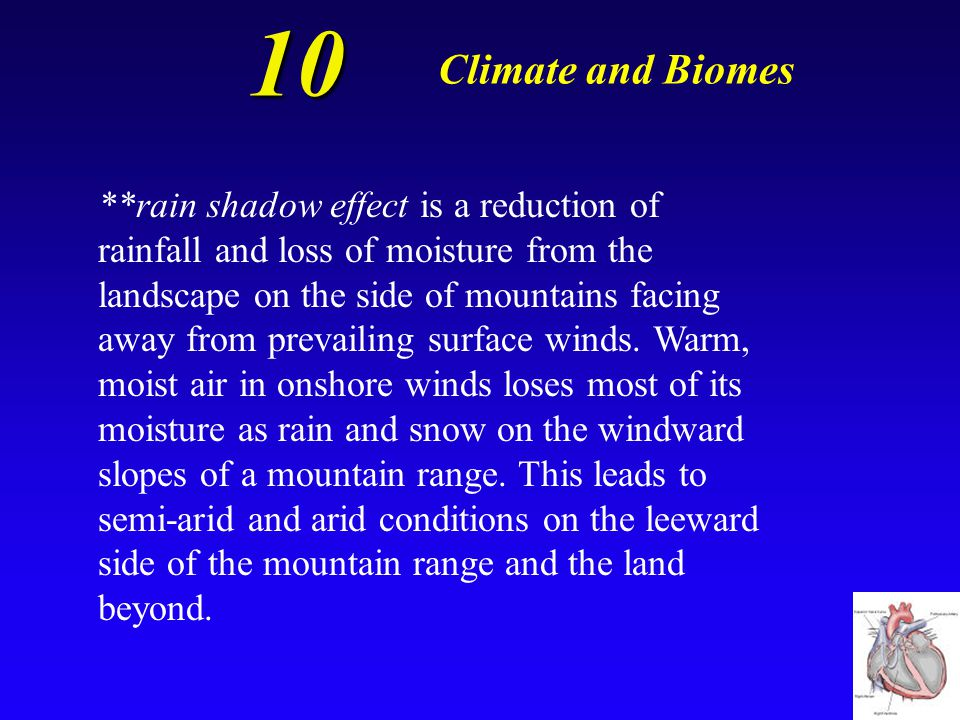 10 Climate and Biomes What is the rain shadow effect and how can it lead to the formation of deserts