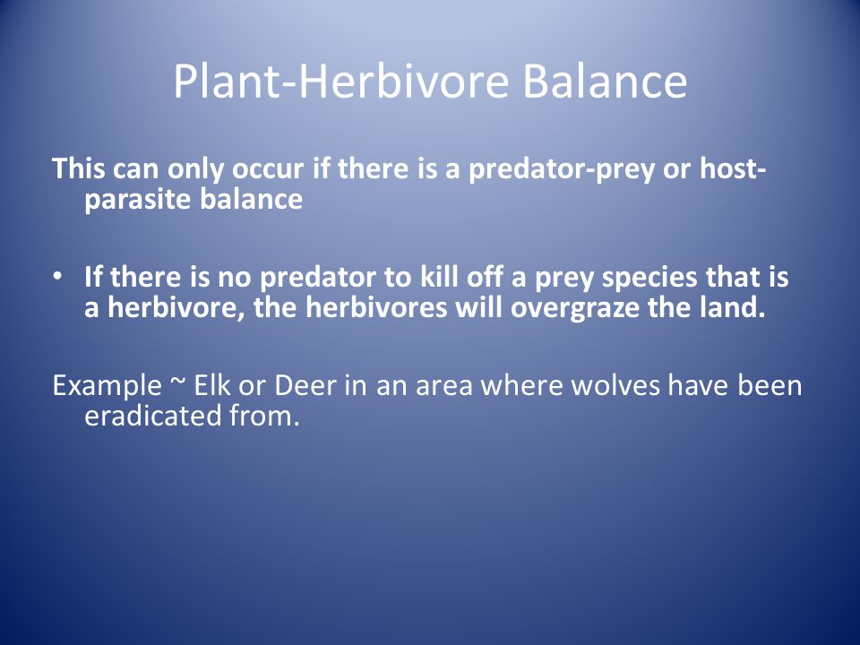 Plant-Herbivore Balance This can only occur if there is a predator-prey or host- parasite balance If there is no predator to kill off a prey species that is a herbivore, the herbivores will overgraze the land.