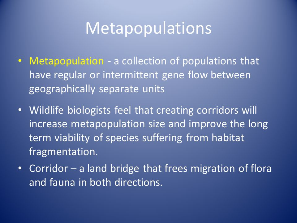 Metapopulations Metapopulation - a collection of populations that have regular or intermittent gene flow between geographically separate units Wildlife biologists feel that creating corridors will increase metapopulation size and improve the long term viability of species suffering from habitat fragmentation.
