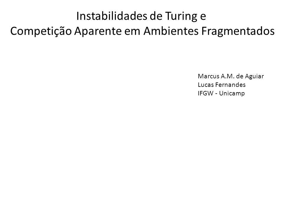 Instabilidades de Turing e Competição Aparente em Ambientes Fragmentados Marcus A.M. de Aguiar Lucas Fernandes IFGW - Unicamp