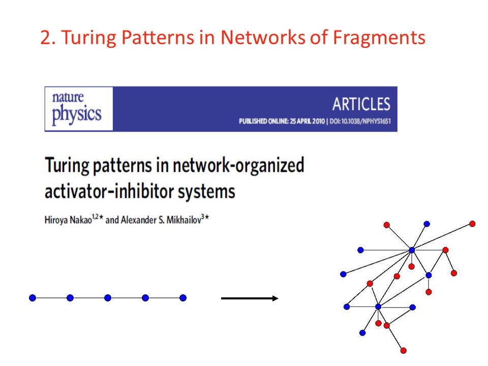 2. Turing Patterns in Networks of Fragments