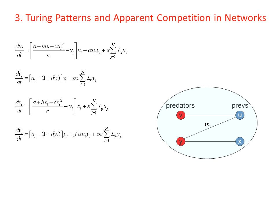 3. Turing Patterns and Apparent Competition in Networks u x v y predatorspreys 