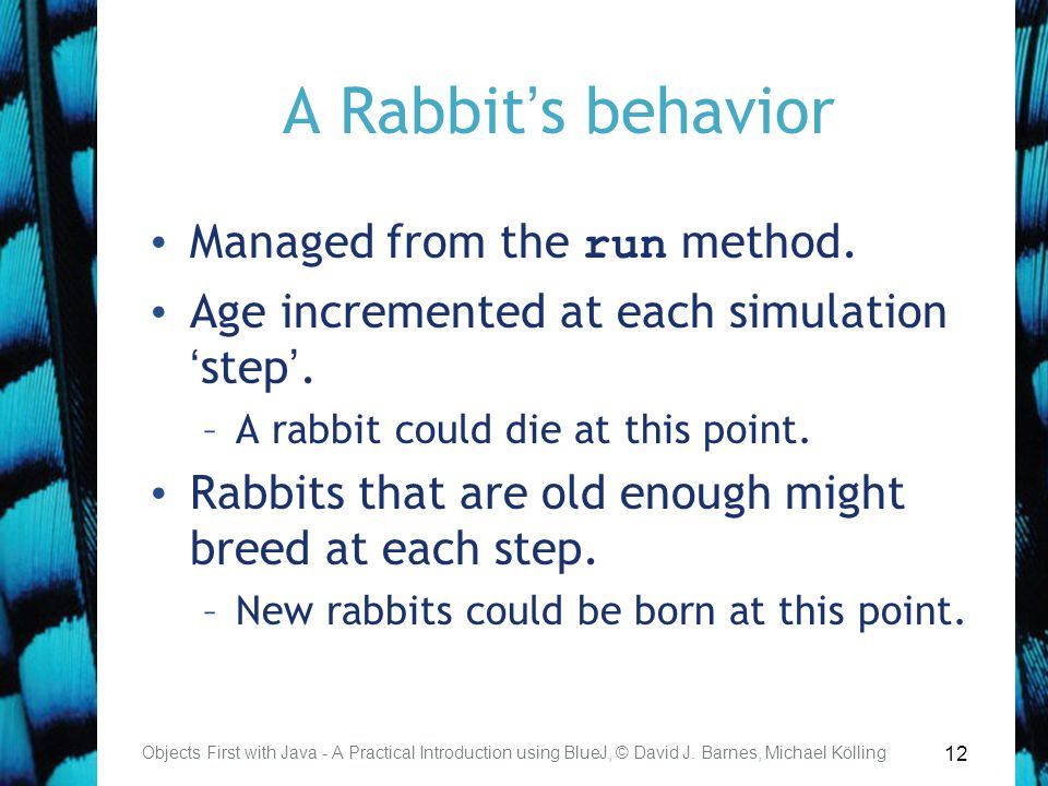 12 A Rabbit's behavior Managed from the run method.