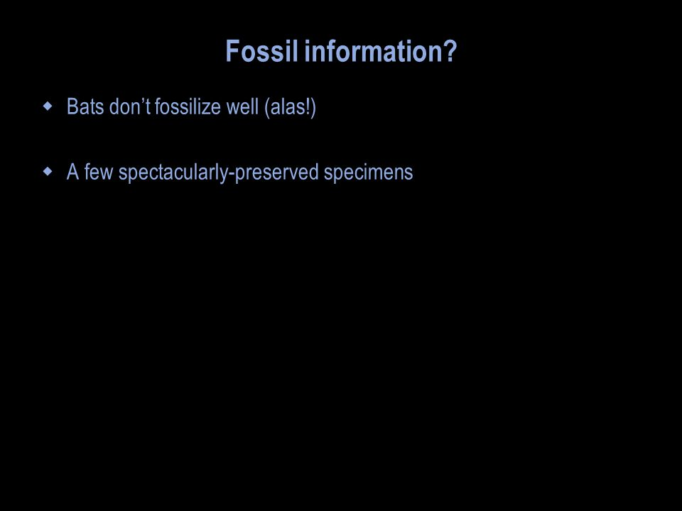 Fossil information?  Bats don't fossilize well (alas!)  A few spectacularly-preserved specimens