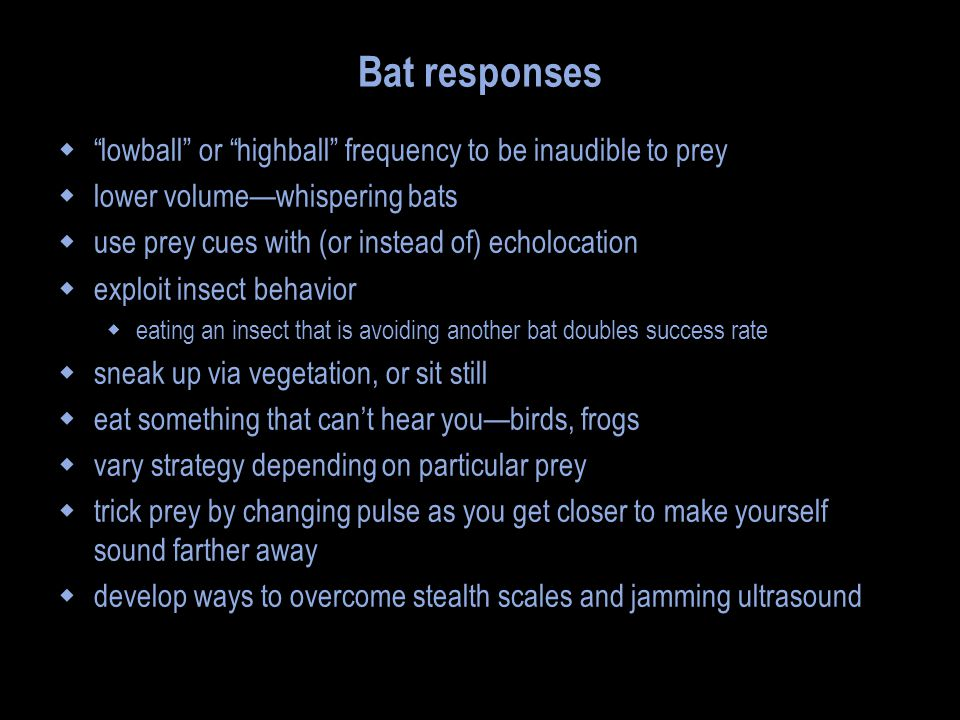 Bat responses  lowball or highball frequency to be inaudible to prey  lower volume—whispering bats  use prey cues with (or instead of) echolocation  exploit insect behavior  eating an insect that is avoiding another bat doubles success rate  sneak up via vegetation, or sit still  eat something that can't hear you—birds, frogs  vary strategy depending on particular prey  trick prey by changing pulse as you get closer to make yourself sound farther away  develop ways to overcome stealth scales and jamming ultrasound
