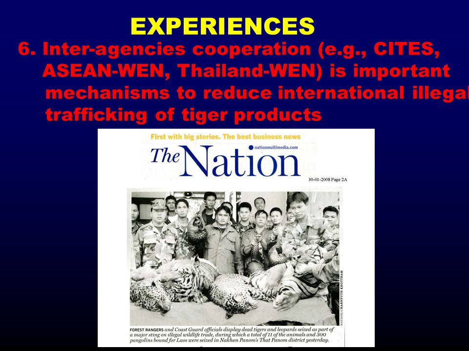 EXPERIENCES 6. Inter-agencies cooperation (e.g., CITES, ASEAN-WEN, Thailand-WEN) is important mechanisms to reduce international illegal trafficking o