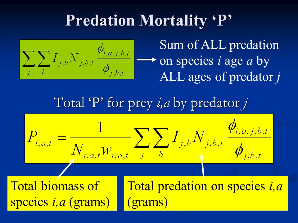 Total 'P' for prey i,a by predator j Predation Mortality 'P' Sum of ALL predation on species i age a by ALL ages of predator j Total predation on species i,a (grams) Total biomass of species i,a (grams)