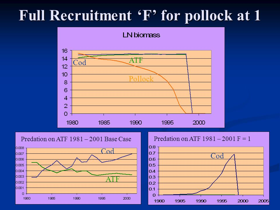 Full Recruitment 'F' for pollock at 1 Pollock Cod ATF Cod Predation on ATF 1981 – 2001 Base Case Predation on ATF 1981 – 2001 F = 1