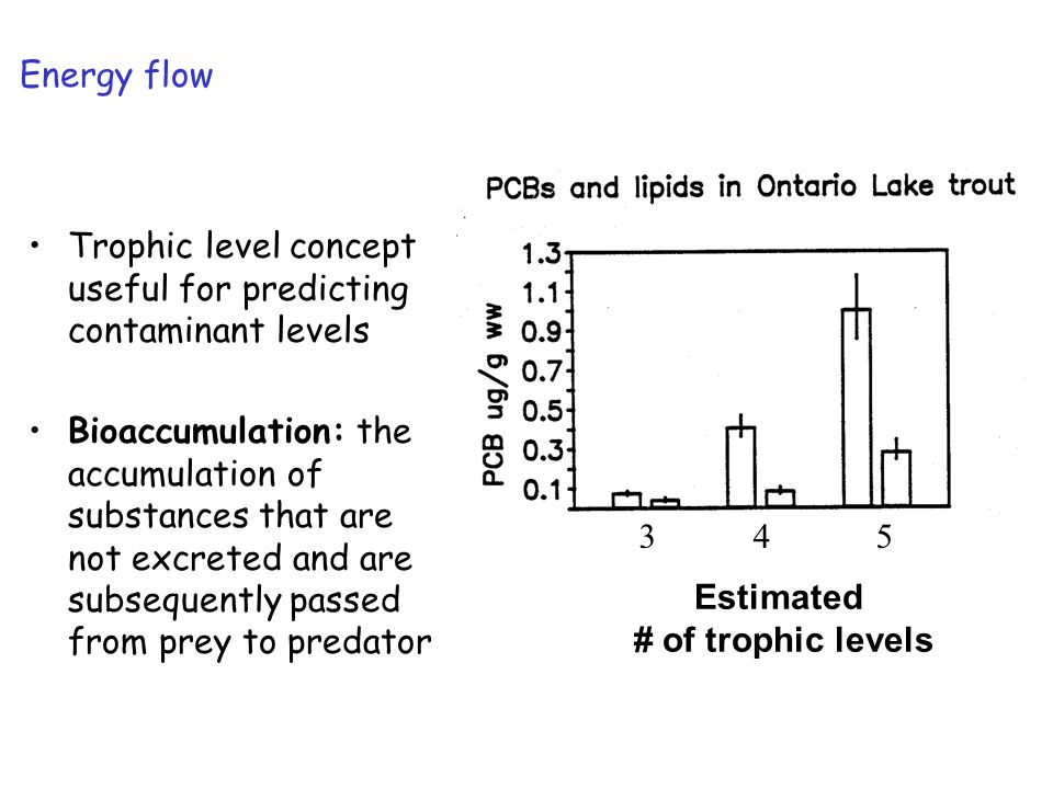 Biomanipulation of Lake Mendota: Summary Success: Daphnia pulicaria have dominated for over a decade Changes in fisheries management affected water quality.