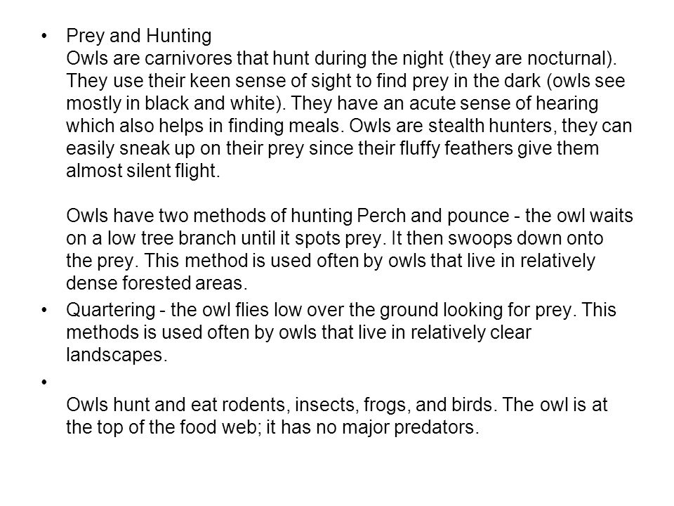 Prey and Hunting Owls are carnivores that hunt during the night (they are nocturnal). They use their keen sense of sight to find prey in the dark (owl