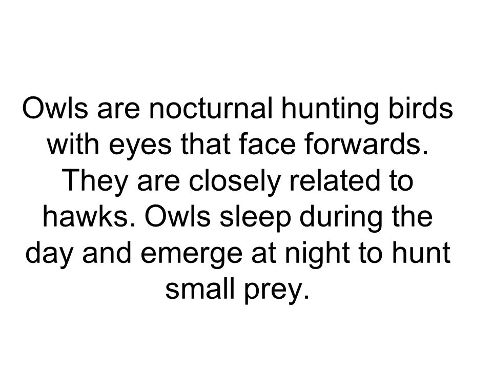 Hunting and Diet Owls are usually opportunistic feeders Prey includes invertebrates, fish, reptiles, amphibians, birds, and small mammals.