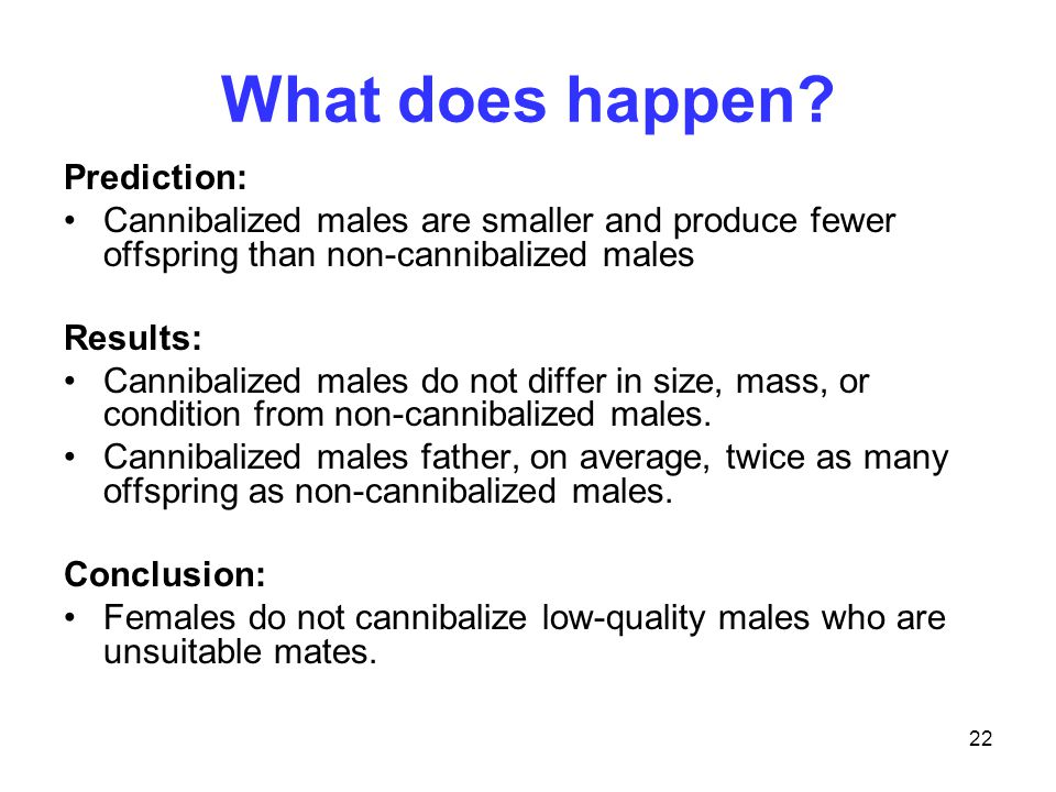 22 What does happen? Prediction: Cannibalized males are smaller and produce fewer offspring than non-cannibalized males Results: Cannibalized males do