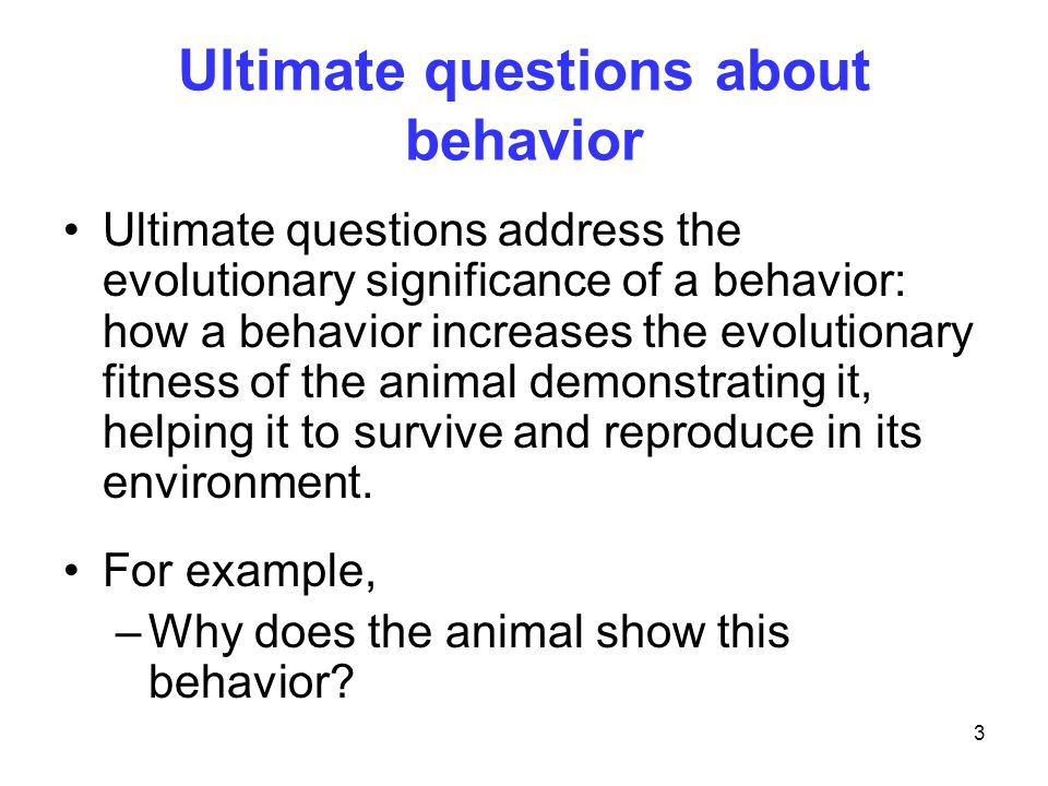3 Ultimate questions about behavior Ultimate questions address the evolutionary significance of a behavior: how a behavior increases the evolutionary fitness of the animal demonstrating it, helping it to survive and reproduce in its environment.