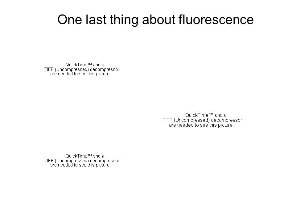 One last thing about fluorescence