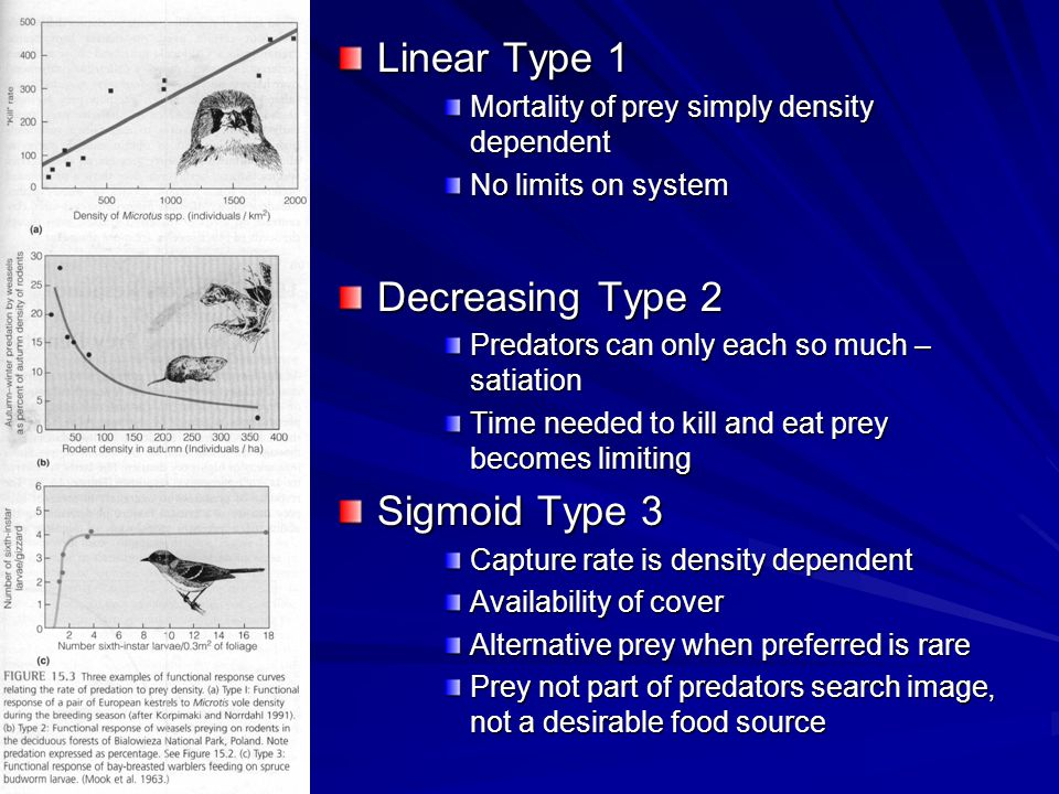 Linear Type 1 Mortality of prey simply density dependent No limits on system Decreasing Type 2 Predators can only each so much – satiation Time needed to kill and eat prey becomes limiting Sigmoid Type 3 Capture rate is density dependent Availability of cover Alternative prey when preferred is rare Prey not part of predators search image, not a desirable food source