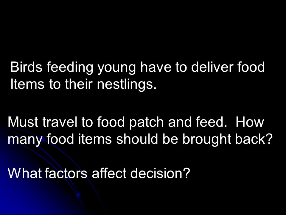 Optimal prey delivery. Birds feeding young have to deliver food Items to their nestlings. Must travel to food patch and feed. How many food items shou