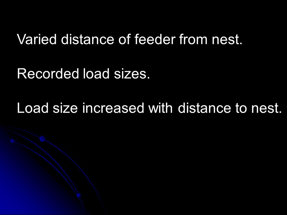 Varied distance of feeder from nest. Recorded load sizes.