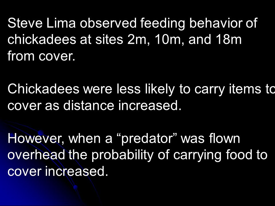 Steve Lima observed feeding behavior of chickadees at sites 2m, 10m, and 18m from cover. Chickadees were less likely to carry items to cover as distan