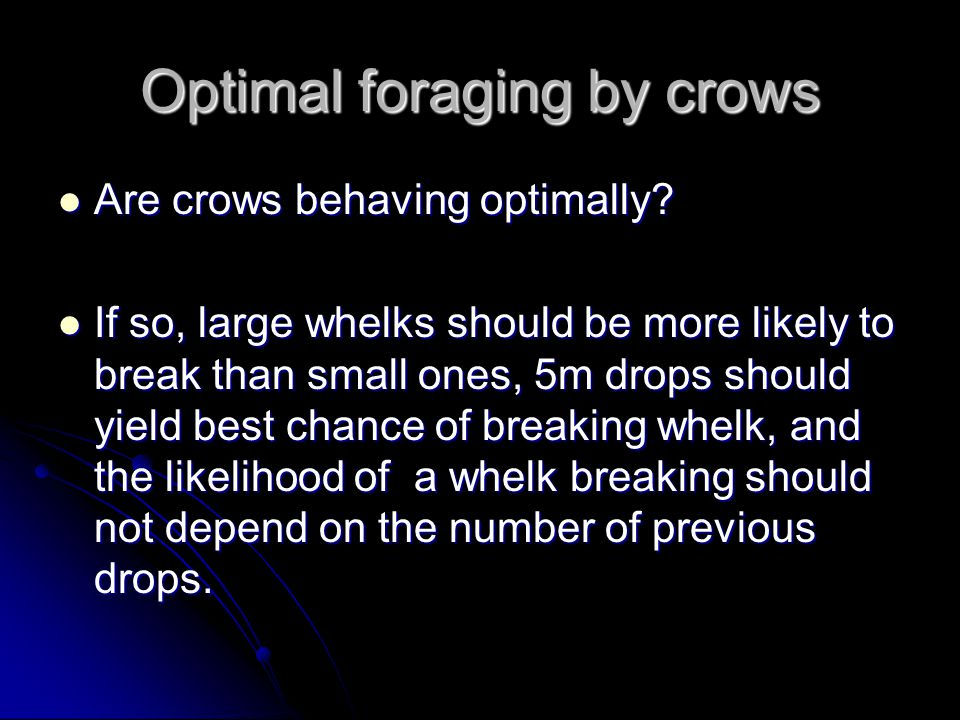 Optimal foraging by crows Are crows behaving optimally? Are crows behaving optimally? If so, large whelks should be more likely to break than small on