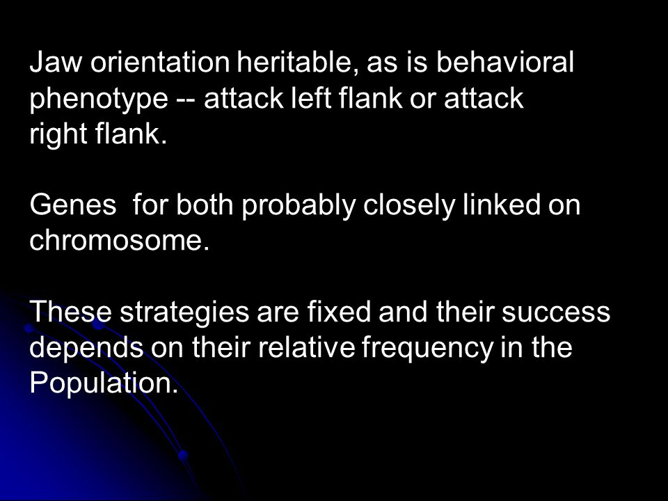 Jaw orientation heritable, as is behavioral phenotype -- attack left flank or attack right flank. Genes for both probably closely linked on chromosome
