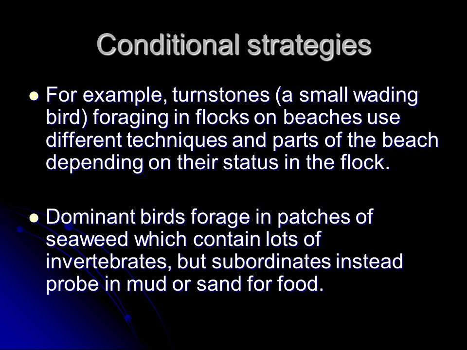 Conditional strategies For example, turnstones (a small wading bird) foraging in flocks on beaches use different techniques and parts of the beach dep