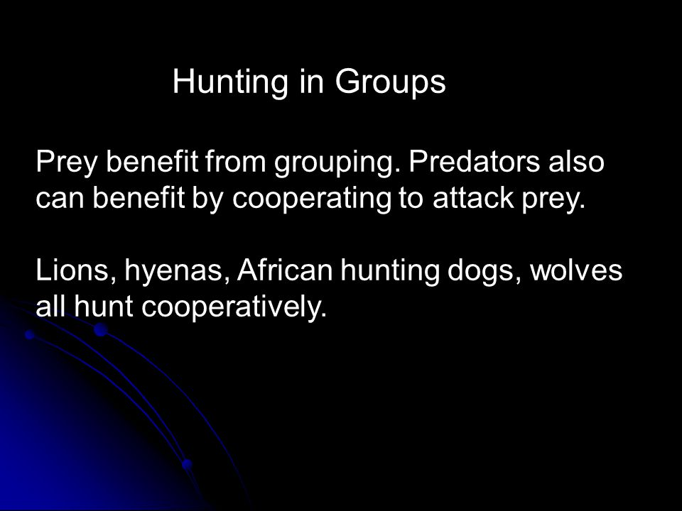 Hunting in Groups Prey benefit from grouping. Predators also can benefit by cooperating to attack prey. Lions, hyenas, African hunting dogs, wolves al