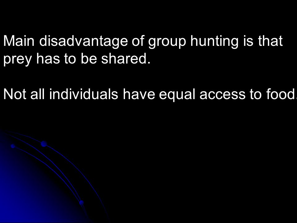 Main disadvantage of group hunting is that prey has to be shared. Not all individuals have equal access to food.