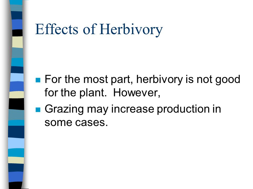 Effects of Herbivory n For the most part, herbivory is not good for the plant. However, n Grazing may increase production in some cases.