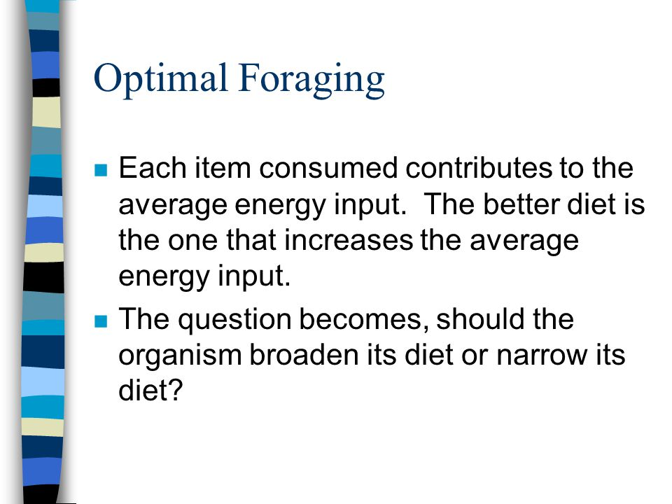Optimal Foraging n Each item consumed contributes to the average energy input. The better diet is the one that increases the average energy input. n T