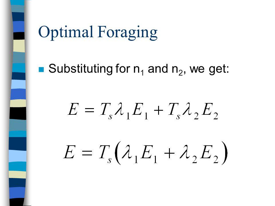 Optimal Foraging n Substituting for n 1 and n 2, we get: