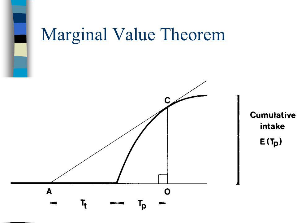 Marginal Value Theorem