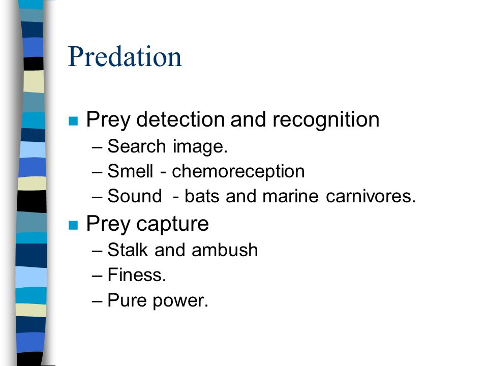 Predation n Prey detection and recognition –Search image. –Smell - chemoreception –Sound - bats and marine carnivores. n Prey capture –Stalk and ambus