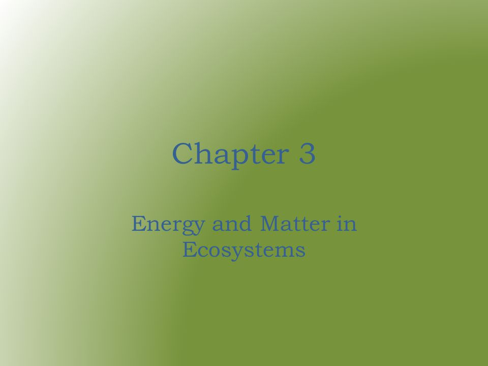 Chapter 3 Energy and Matter in Ecosystems