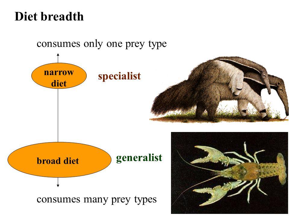 How has predation influenced evolution.