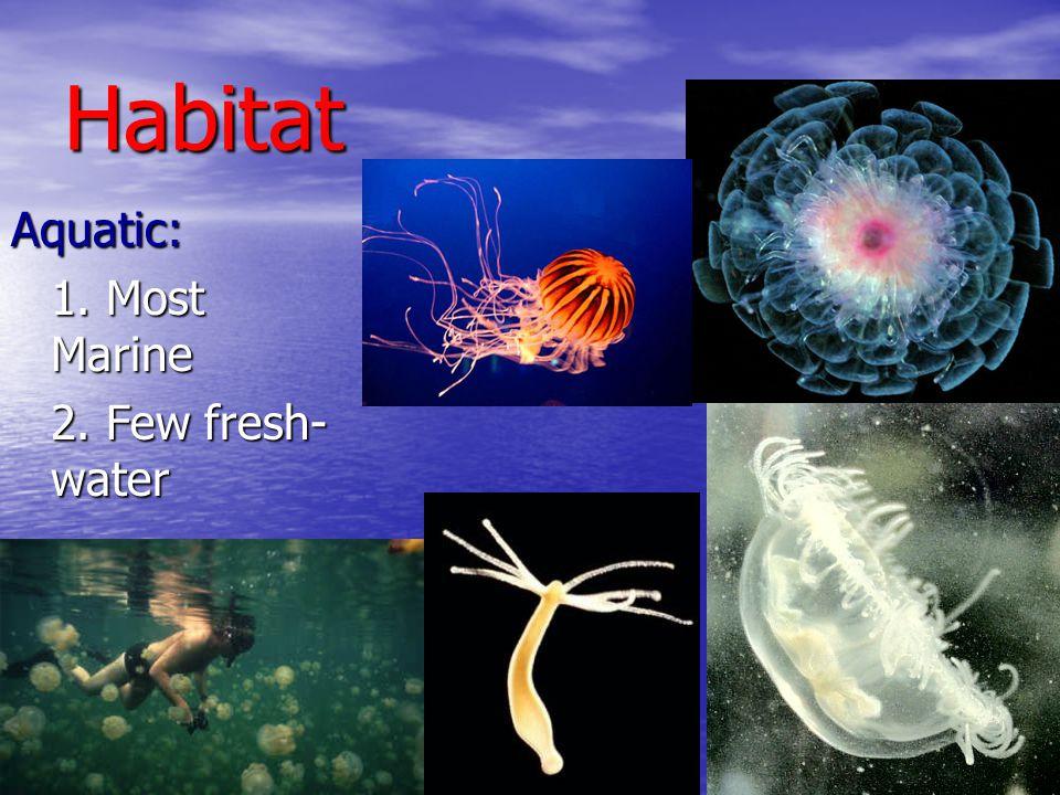 Habitat Aquatic: 1. Most Marine 2. Few fresh- water