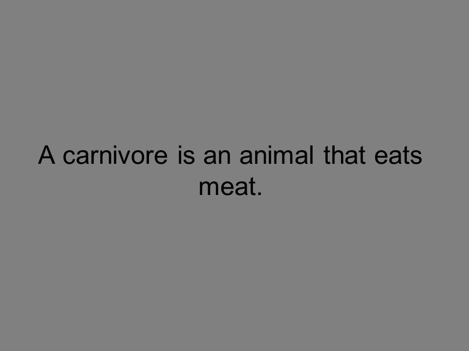A carnivore is an animal that eats meat.