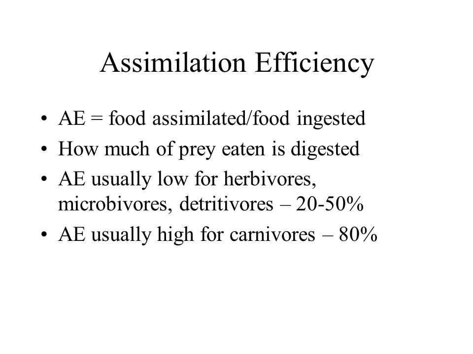 Assimilation Efficiency AE = food assimilated/food ingested How much of prey eaten is digested AE usually low for herbivores, microbivores, detritivores – 20-50% AE usually high for carnivores – 80%