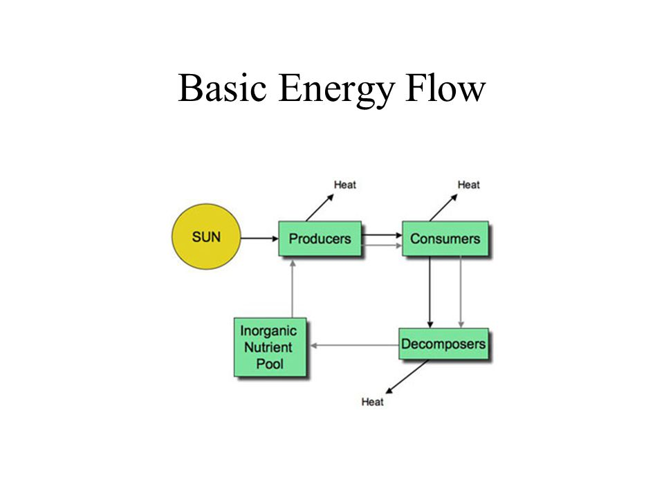 Basic Energy Flow
