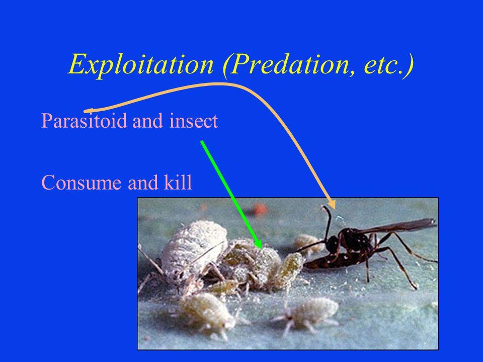 Exploitation (Predation, etc.) Parasitoid and insect Consume and kill