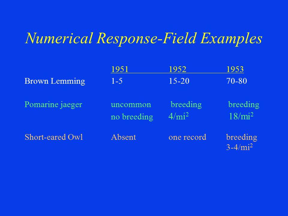 195119521953 Brown Lemming1-515-2070-80 Pomarine jaeger uncommon breeding breeding no breeding 4/ m i 2 18/mi 2 Short-eared OwlAbsentone recordbreedin