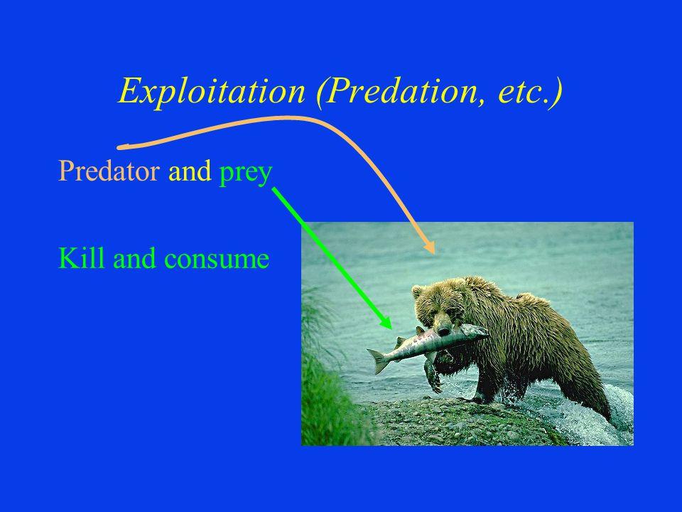 Exploitation (Predation, etc.) Predator and prey Kill and consume