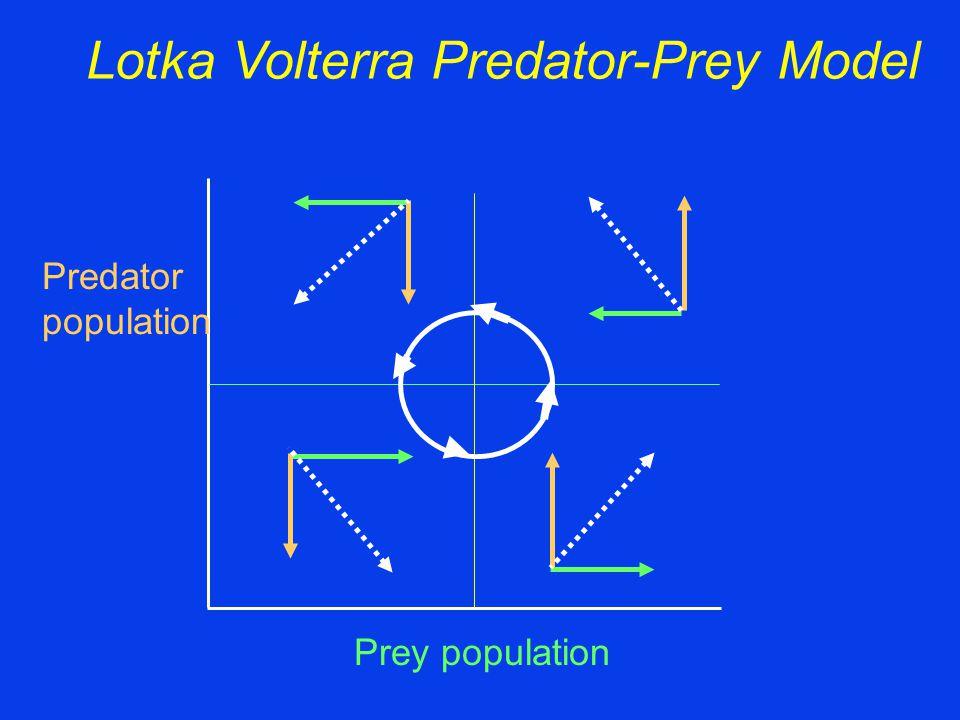 Lotka Volterra Predator-Prey Model Prey population Predator population