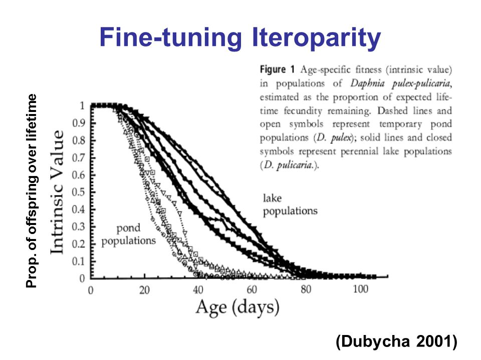 Fine-tuning Iteroparity Prop. of offspring over lifetime (Dubycha 2001)