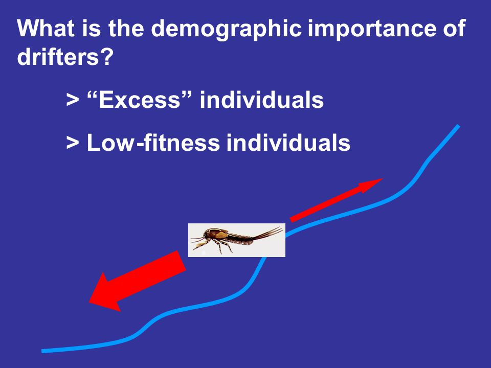 What is the demographic importance of drifters? > Excess individuals > Low-fitness individuals