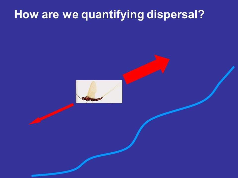 How are we quantifying dispersal?