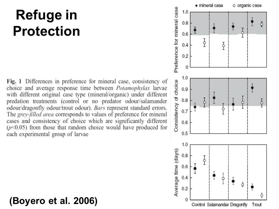 Refuge in Protection (Boyero et al. 2006)