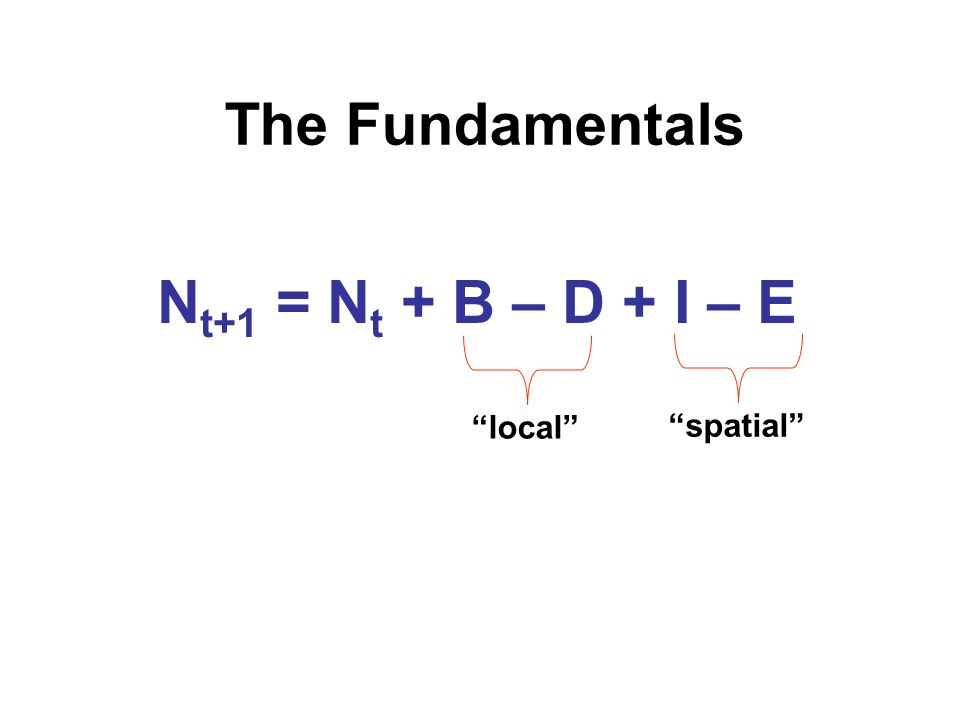 """The Fundamentals N t+1 = N t + B – D + I – E """"local"""" """"spatial"""""""