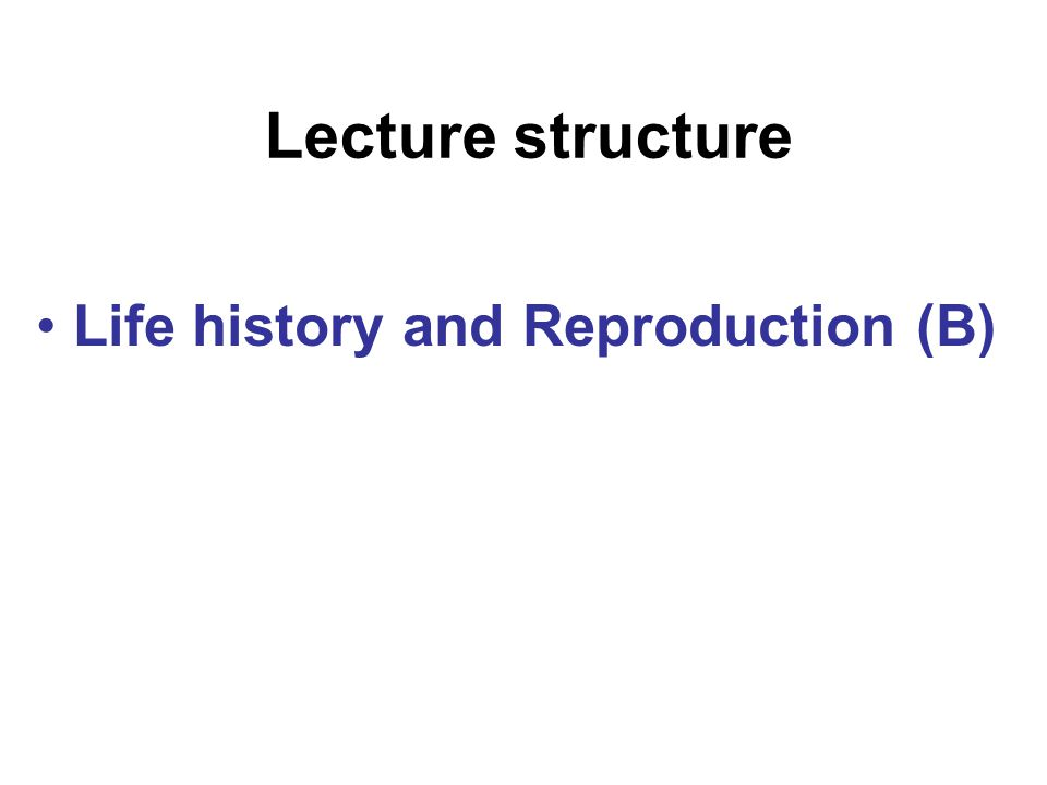 Lecture structure Life history and Reproduction (B)